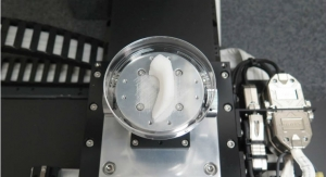 Watch a Jaw Being Bioprinted