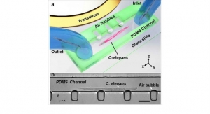 Microfluidic Devices Gently Rotate Small Organisms and Cells
