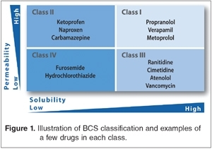 The Biopharmaceutics Classification System