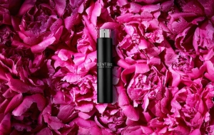 More Funding, New Options at Scentbird