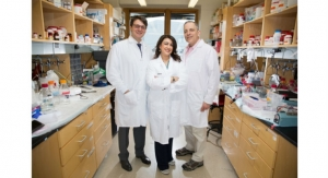 Implantable Device Targets Pancreatic Cancer