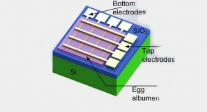 Making Dissolvable Medical Electronic Implants Out of Eggs
