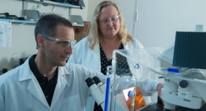 Study Probes Heart of Synthetic Valves