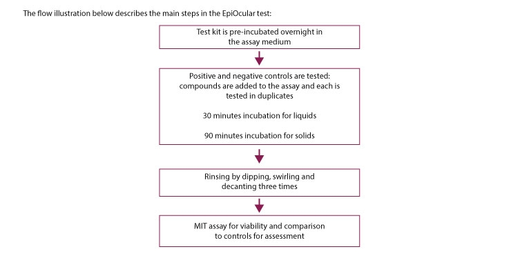 The flow illustration describes the main steps in the EpiOcular test.