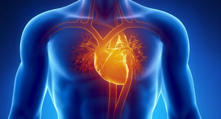Electric Mesh Device Gives the Heart an Electromechanical Hug