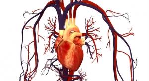 Nanoengineer Receives NIH Grant to Print Pre-Vascularized Cardiac Tissue