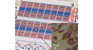 Microfluidic Chip Adipose Analysis May Help Combat Obesity and Diabetes