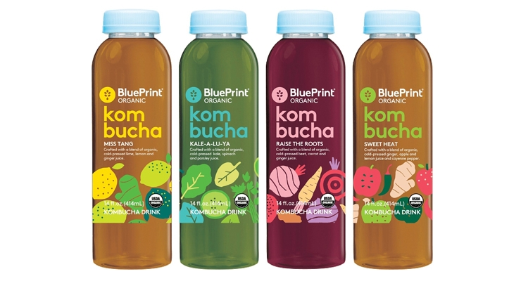 Blueprint organic launches kombucha drinks nutraceuticals world blueprint organic launches kombucha drinks malvernweather Choice Image