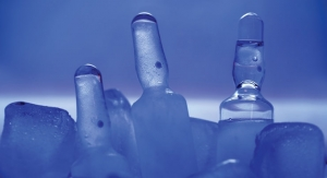 The Complexity of Cold Chain Logistics