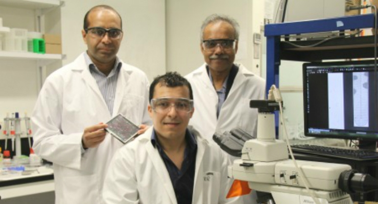 Nano-Scale Device Ensnares Bacteria and Determines Best Course of Treatment