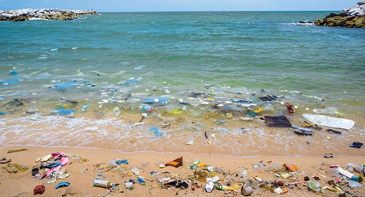 Ocean dumping is a growing concern throughout the world.