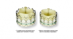 Edwards Sapien Valves Demonstrate Excellent Durability in 5-Year Echo Study