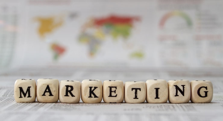 Who's your marketing expert?