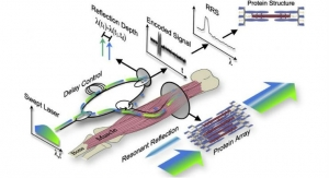 Minimally Invasive Fiber Optic Tool Measures Muscle Impairment