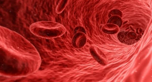 Making Artificial Blood for Transfusions