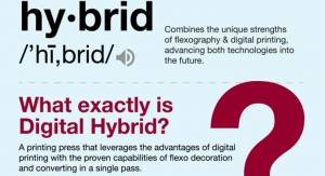 The meaning of digital hybrids