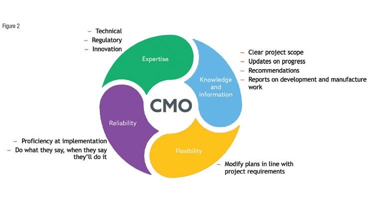 CMO Selection Criteria