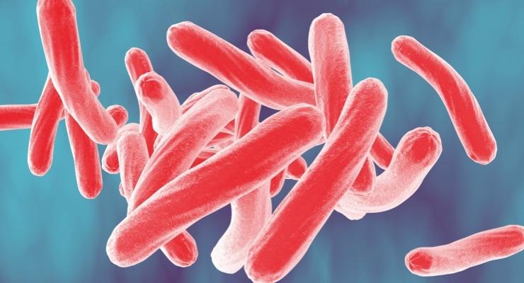 Tackling TB Resistance