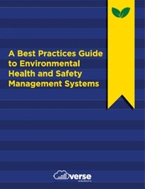 A Best Practices Guide to Environmental Health and Safety Management Systems