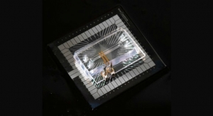 Organs-on-Chips Get Smart and Go Electric