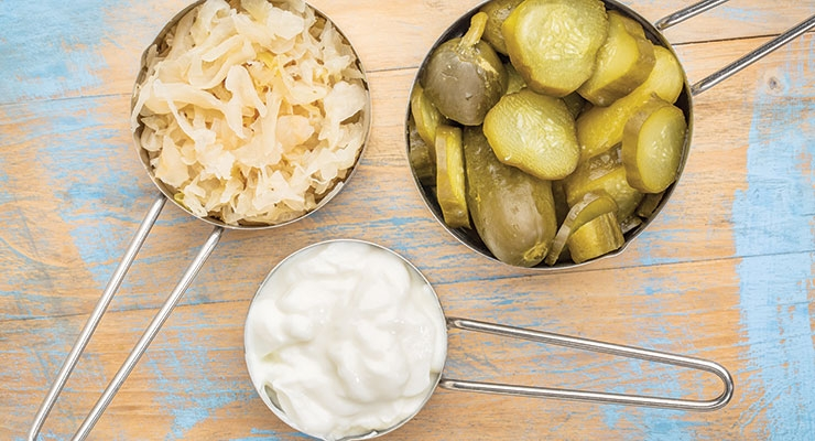 Pickles and sauerkraut and yogurt, oh my!