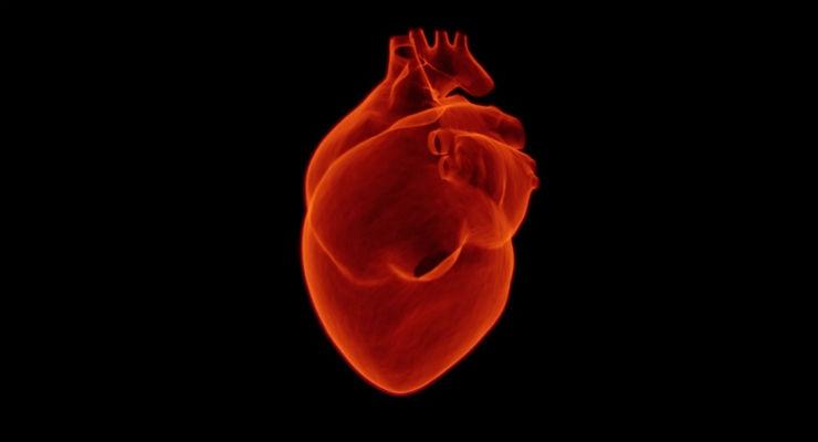 A Heart Attack in a Petri Dish