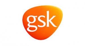 5 GlaxoSmithKline