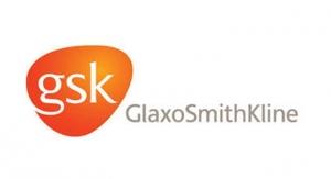 13.  GlaxoSmithKline
