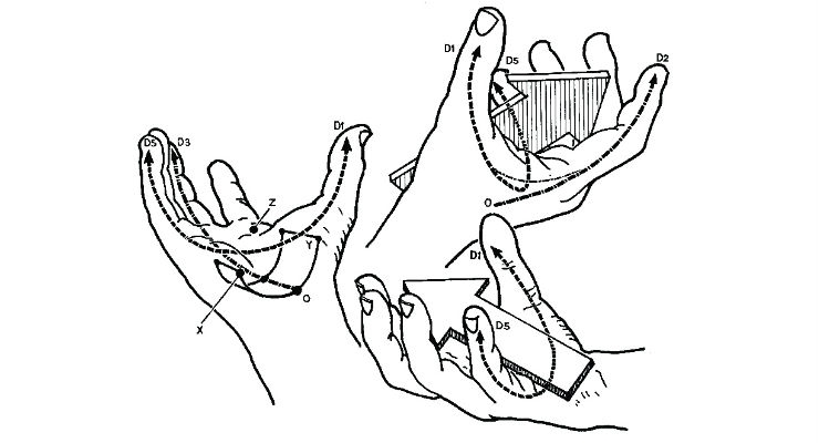 Figure 2: A human's four fingers are effectively hinged joints and do not have significant strength or dexterity moving laterally, whereas the thumb possesses an omnidirectional ball joint support with larger muscles affording greater strength. As the hand closes, it forms a natural grip axis (see arrow) and defines three palmar arches that will shape and inform instrument grips, surface topology, and control interface locations. Image courtesy of Kapandji 1982.