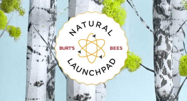Hungry For Innovation: Burt's Bees Unveils New Natural Launchpad Cohort