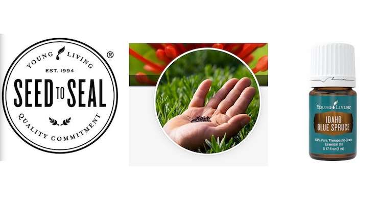Young Living Essential Oils Advances Its Sustainability Program