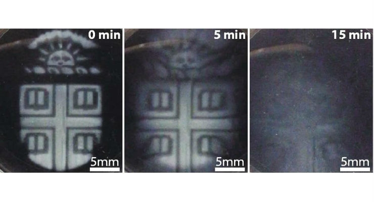 Brown researchers have found a way to 3D print intricate temporary microstructures that can be degraded on demand using a biocompatible chemical trigger. Image courtesy of Wong Lab/Brown University.
