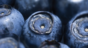 Indena's Bilberry Extract Offers Support from Dry Eye