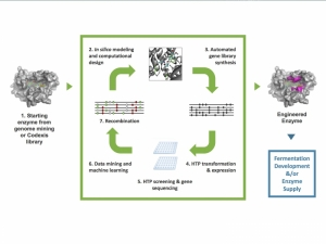 Biocatalysis for APIs