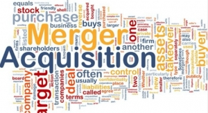 CMO/CDMO Sector Mega-Mergers & Acquisitions
