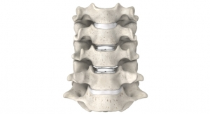 Distinguished Support: A Review of Spinal Orthopedic Technologies