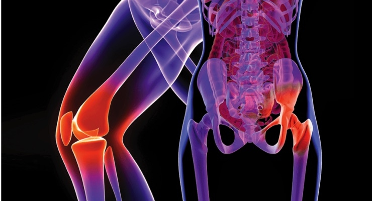 Bone Marrow Concentrate Improves Joint Transplants
