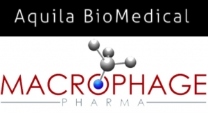 Aquila BioMedical, Macrophage Pharma Extend Immuno-Oncology Agreement