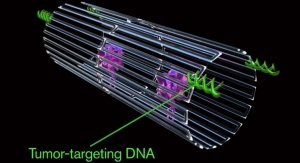 Cancer-Fighting Nanorobots Programmed to Seek & Destroy Tumors