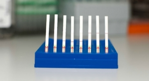 CRISPR-Based Tool Uses Paper Strips to Detect Genetic Signatures