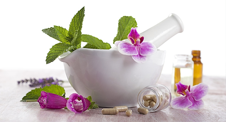 herbal medicines related literature By 100 bc, the greeks had developed a comprehensive philosophy of herbal medicine that related different herbs to different temperaments, seasons and elements such as earth, air, fire and water the romans took the greek theories of medicine and added to them, creating a wealth of medical practices, some of which are still used today.