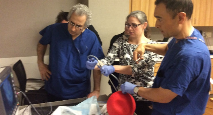How Kickballs, Chicken, and 3D Models Help to Prepare for Complex Fetal Surgeries