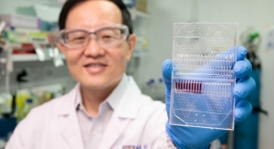 Novel Patient Cell Culture Test Kit Allows Personalized, Precise Cancer Therapy