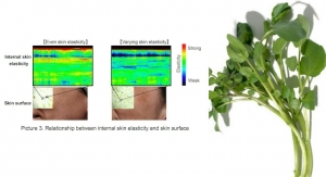 Shiseido Succeeds in Visualization of Internal Skin Elasticity