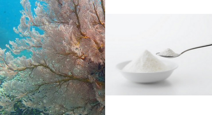 Marine Collagen Market Worth 897.5 Million USD by 2023