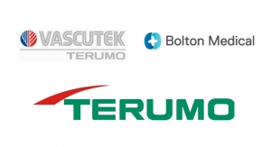 Vascutek and Bolton Medical Merge as Terumo Aortic
