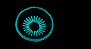 Glowing Contact Lens Could Prevent Leading Cause of Diabetic Blindness