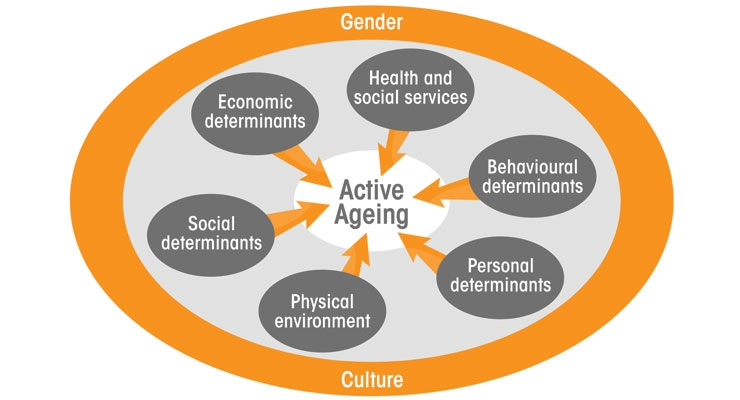 Elements of Healthy Aging: A Multifactorial Endeavor