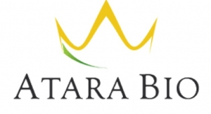 Atara Appoints New R&D Head
