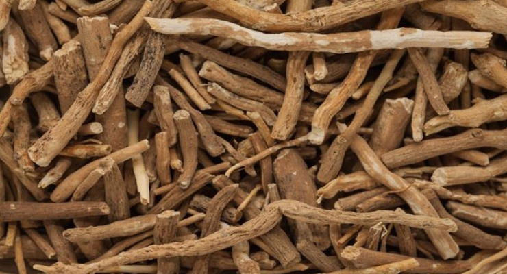 From Essential Oils to Ashwagandha: Trending Ingredients at Vitafoods Europe